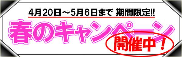 2013春のキャンペーン